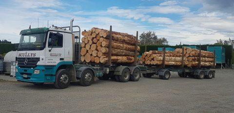 Carting logs